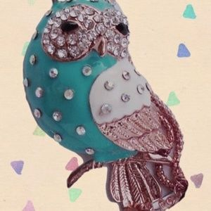 Betsey Johnson Jewelry - Betsey Johnson Teal Enamel and Crystal Owl